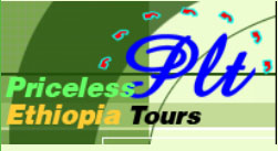 PRICELESS ETHIOPIA TOURS PLC Logo