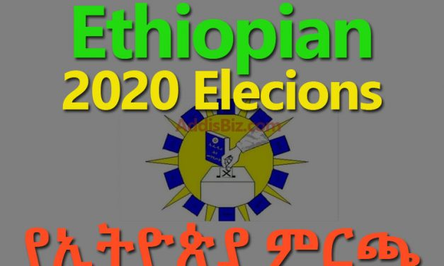 National Electoral Board of Ethiopia (NEBE) Sets Date for Election