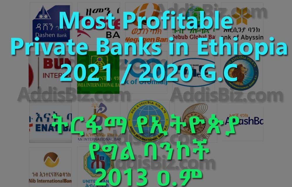 Most profitable Ethiopian Private Banks for 2021 / 2020 fiscal year [Estimation]
