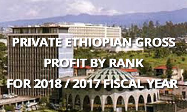 Ethiopian Private Banks Profit for 2018 / 2017 Fiscal Year