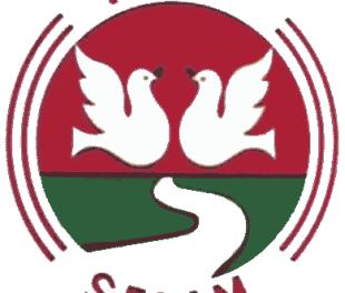 Selam Bus Share Company Earns 33ml Br Gross Profit