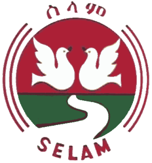 Selam Bus Share Company Earns 33ml Br Gross Profit