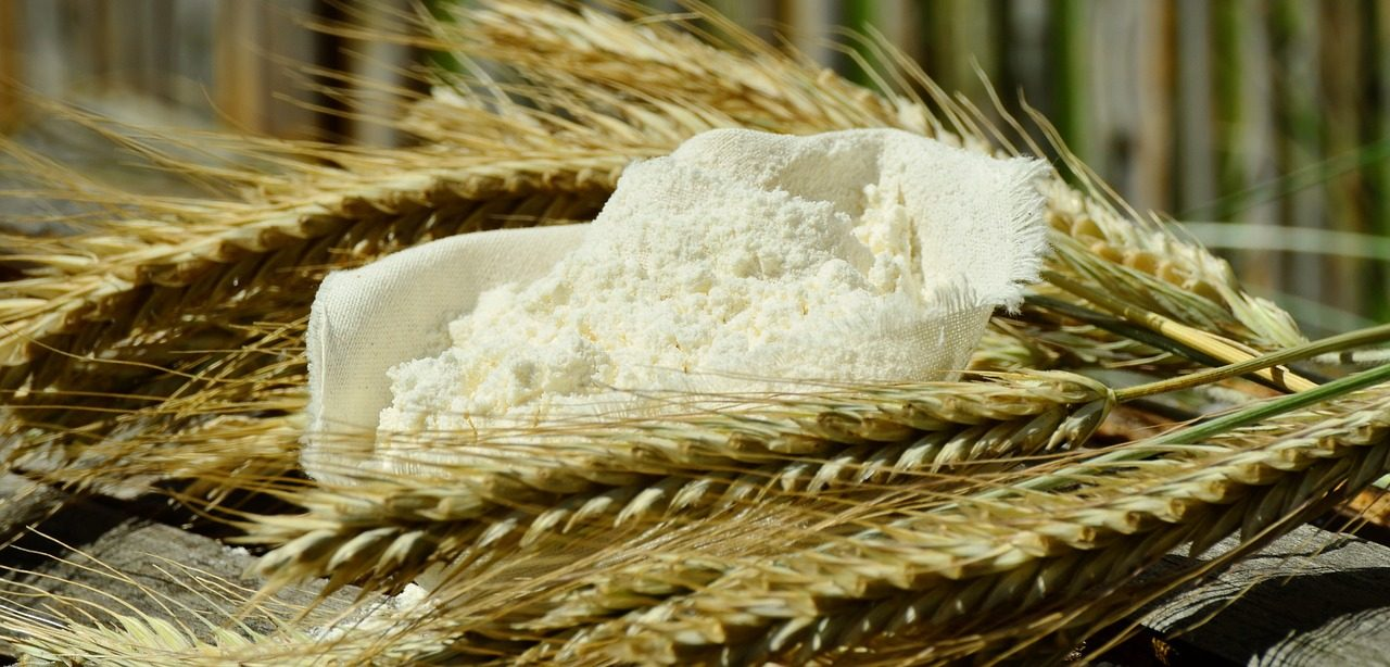 Flour and Biscuit Factory Breaks Ground in Debre Sina