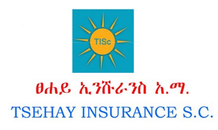 Tsehay Insurance Earns 30.2 million birr Net Profit for 2020/2019 budget year