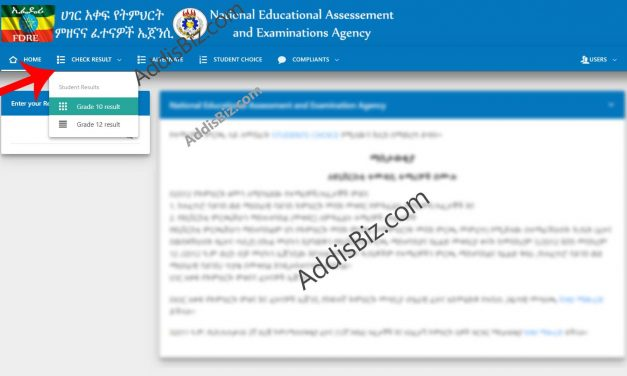 Check NEAEA.gov.et Grade 10 & 12 Matric Exam Results on www.app.neaea.gov.et